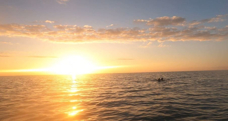 Kayaking-With-Dolphins---St.-Georges-Caye-Resort-Beliz_20210309-194651_1