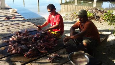 Carlos and Fredis cleaning Lion Fish for staff and guests to enjoy!